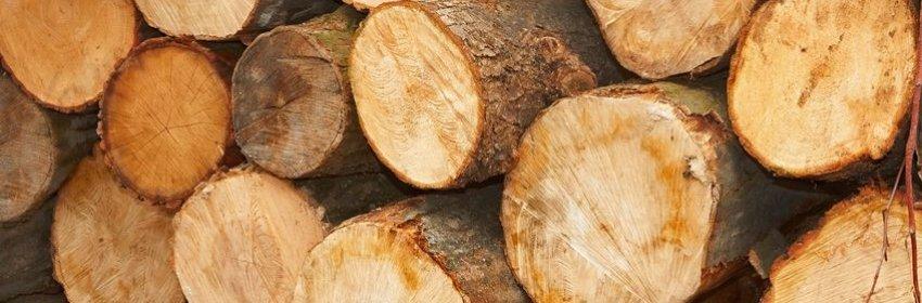 Les métiers du bois Métiers be # Metier Du Bois Liste