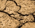 analyste en composition du sol