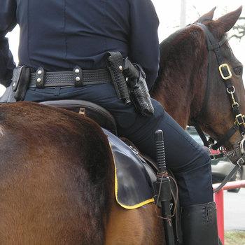 Cavalier à la police fédérale montée