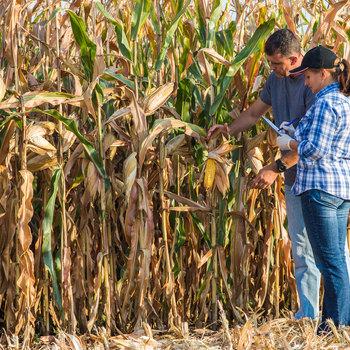 Contrôleur en agriculture biologique