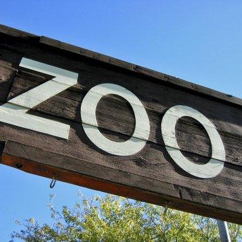 directeur de parc animalier