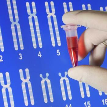 expert en traçabilité génétique