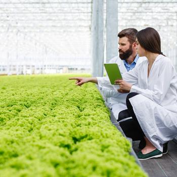 ingénieur en agro-industrie