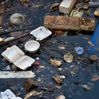 inspecteur mesures anti pollution.jpg