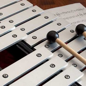 interview professeur en percussion en académie