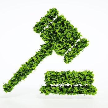 Juriste en droit de l'environnement