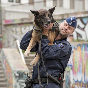 policier à la brigade canine