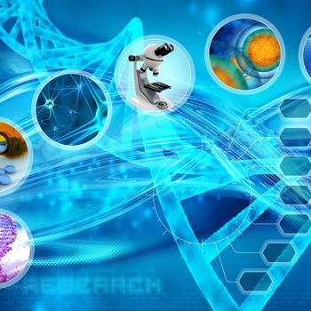 responsable recherche et développement