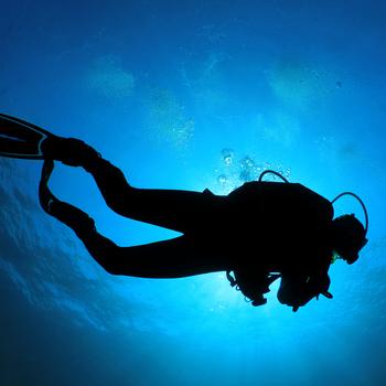 Sous-officier plongeur démineur dans la marine