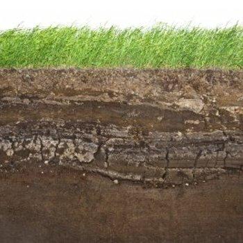 spécialiste en dépollution des sols