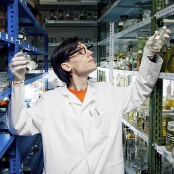 technicien de laboratoire en biologie